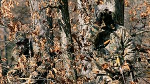 realtree camo Tapete