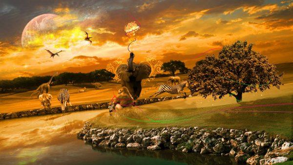 african-wallpaper3-600x338