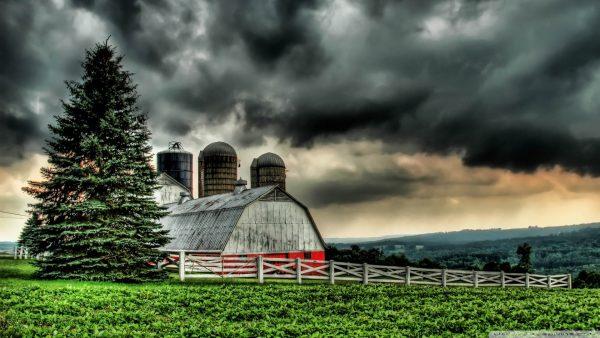 barn-wallpaper6-600x338
