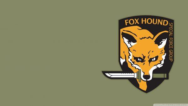 foxhound-wallpaper1-600x338