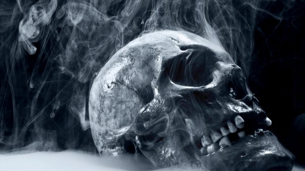 free-skull-wallpaper-downloads2-600x338