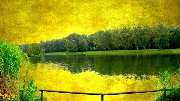 gilman-yellow-wallpaper4-600x338