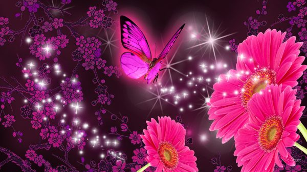 purple-butterfly-wallpaper10-600x338