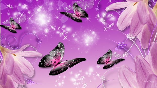 purple-butterfly-wallpaper3-600x338