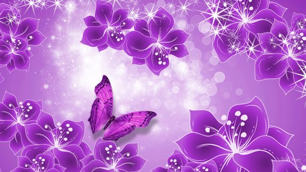 purple-butterfly-wallpaper5-600x338