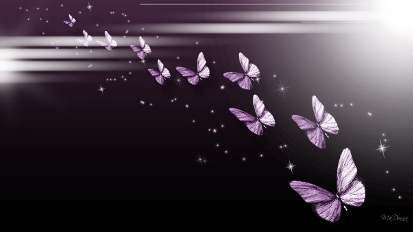 purple-butterfly-wallpaper6-600x338