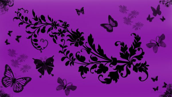 purple-butterfly-wallpaper7-600x338