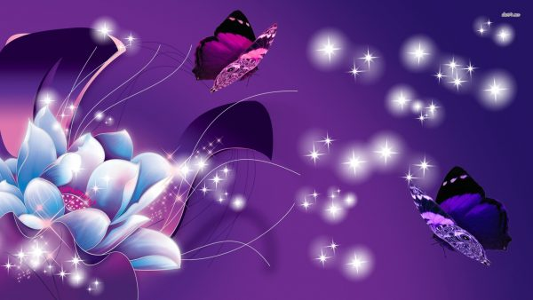purple-butterfly-wallpaper8-600x338