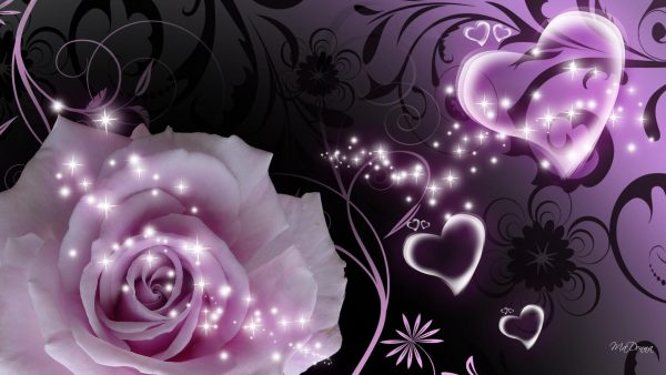 purple-heart-wallpaper190-600x338