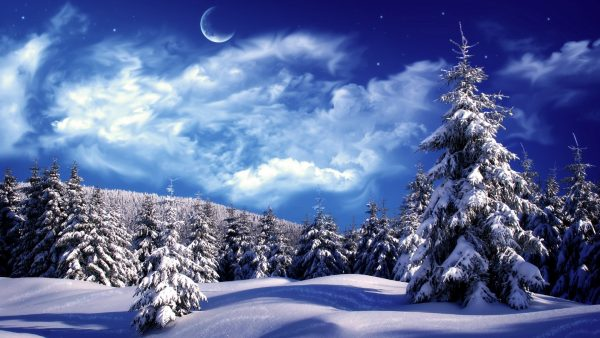 snow-desktop-wallpaper1-600x338