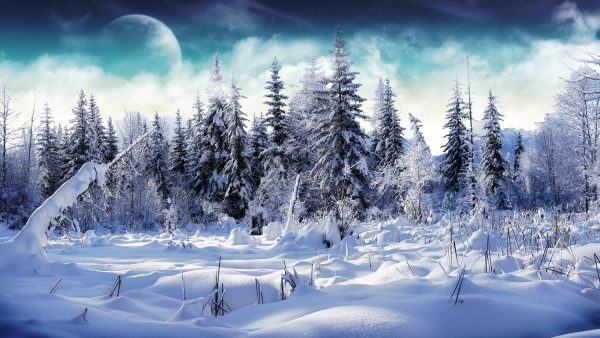 snow-desktop-wallpaper2-600x338