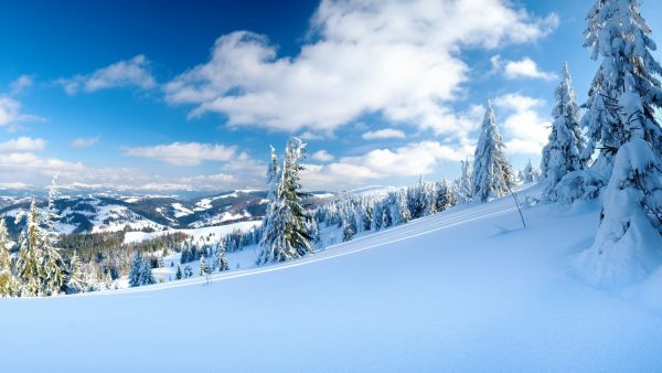 snow-desktop-wallpaper4-600x338