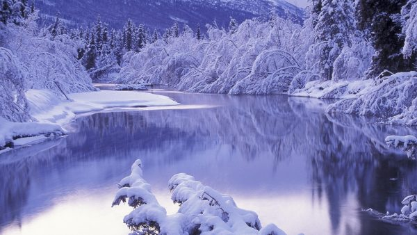 snow-desktop-wallpaper6-600x338
