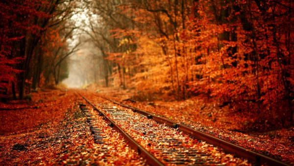 wallpaper-fall5-600x338