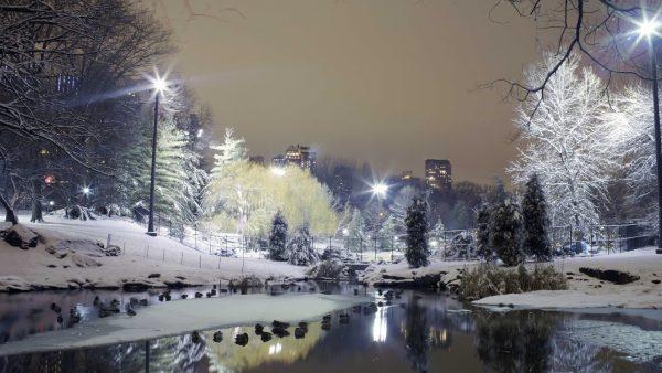 winter-wallpaper-iphone4-600x338