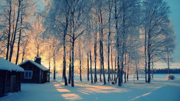 winter-wallpaper-iphone8-600x338
