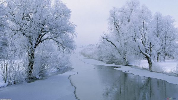iphone-winter-wallpaper2-600x338