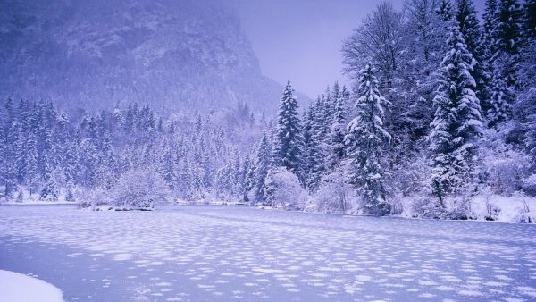 iphone-winter-wallpaper8-600x338