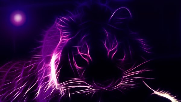 purple wallpaper for walls1 600x338