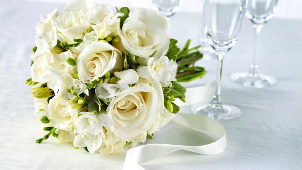 white-rose-wallpaper6-600x338