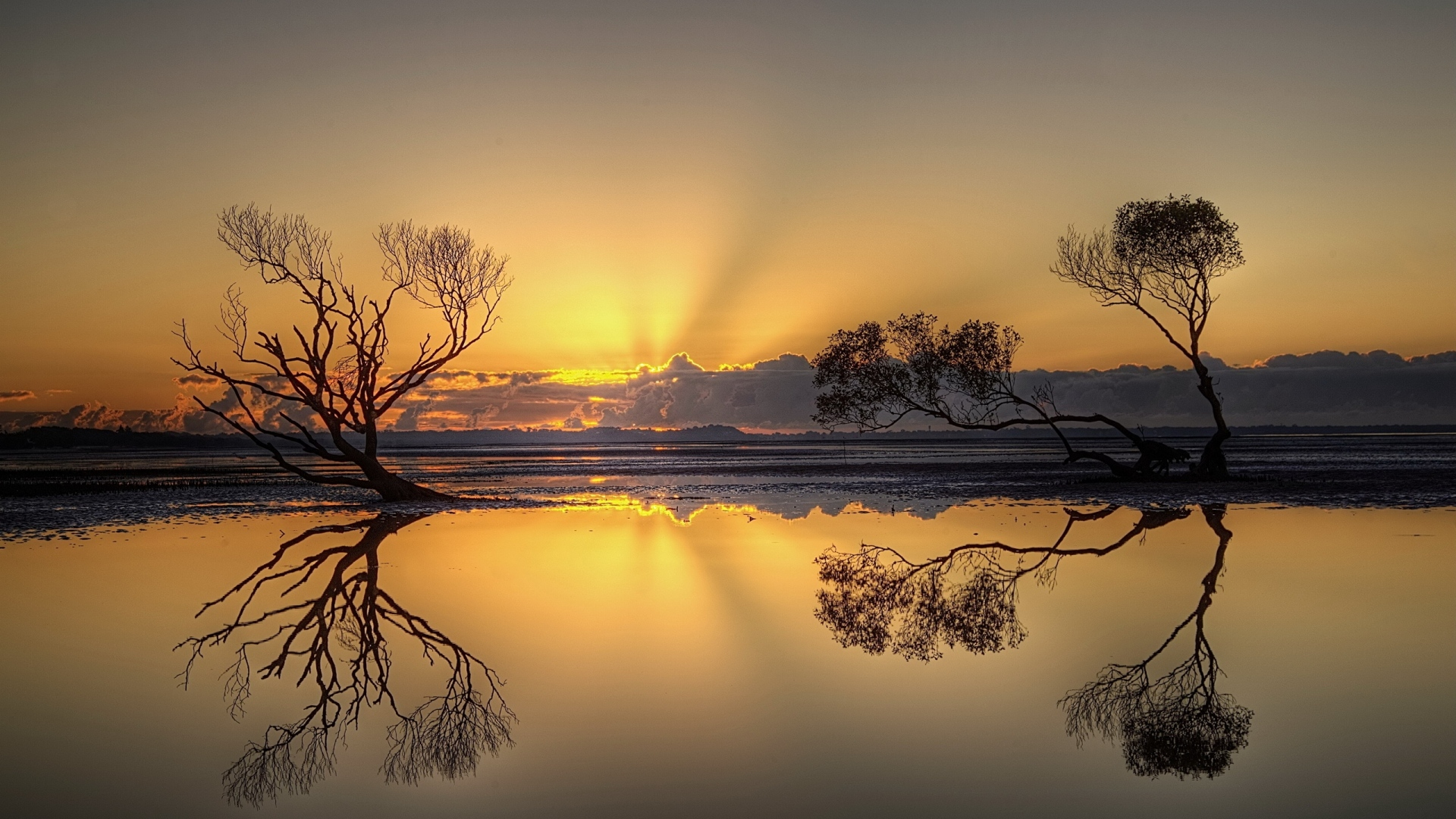 1920x1080-trees-reflection-decline-light-clouds-sky-wallpaper-wp340967