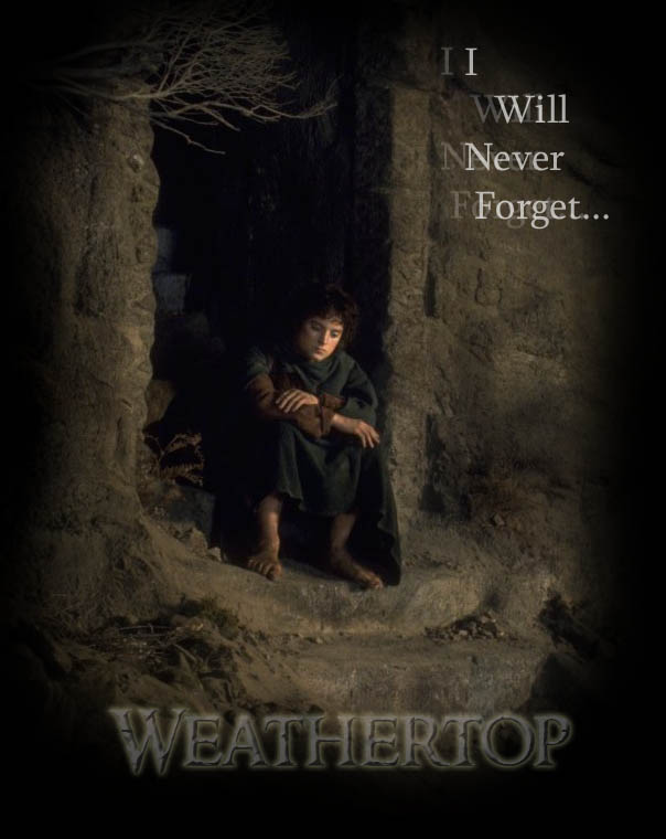 A-little-tribute-to-Frodo-for-October-sixth-wallpaper-wp5004199