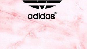 Nike Adidas Tapete