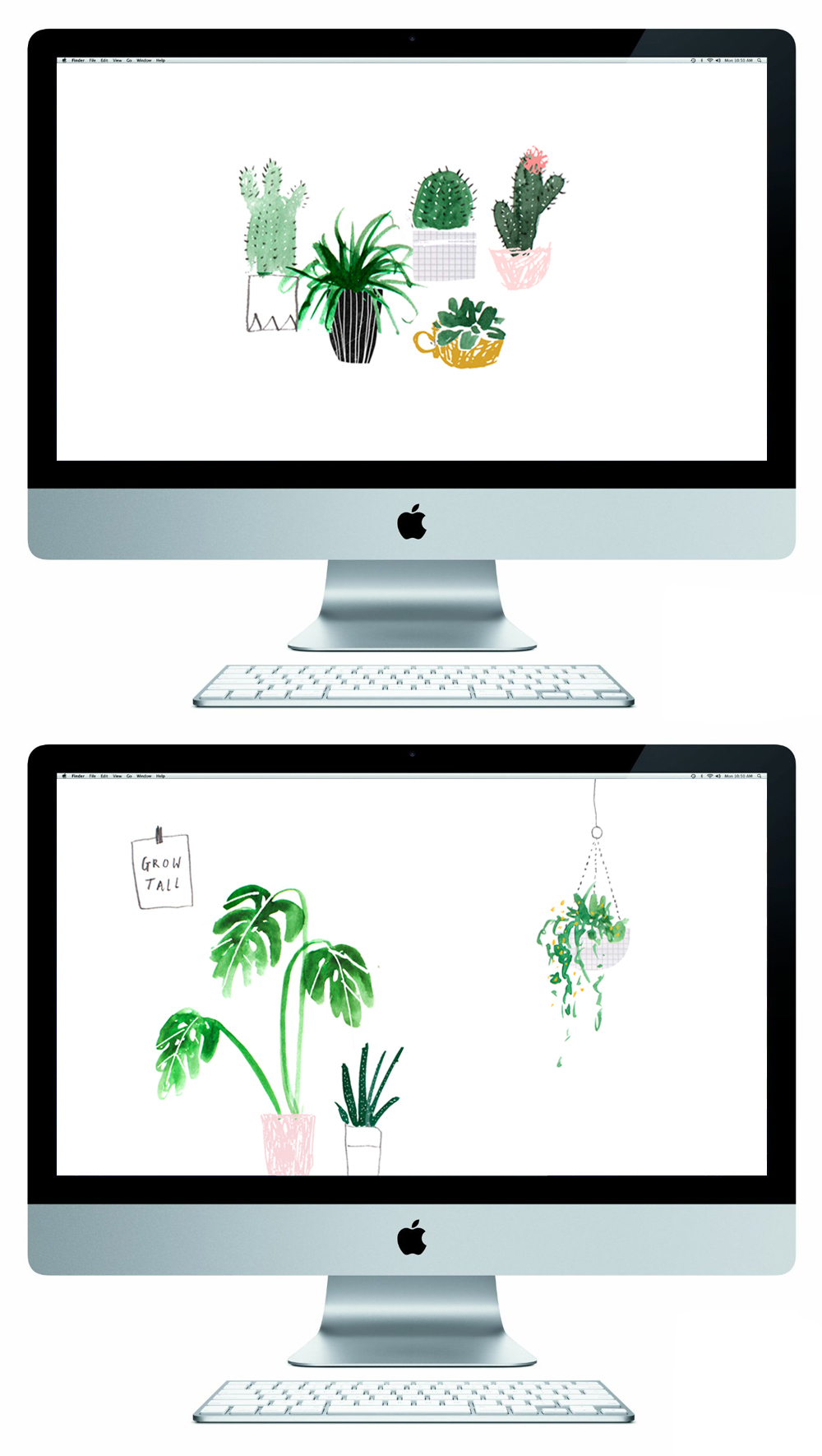 Adorable-Free-featuring-cute-succulent-illustrations-wallpaper-wp5602749