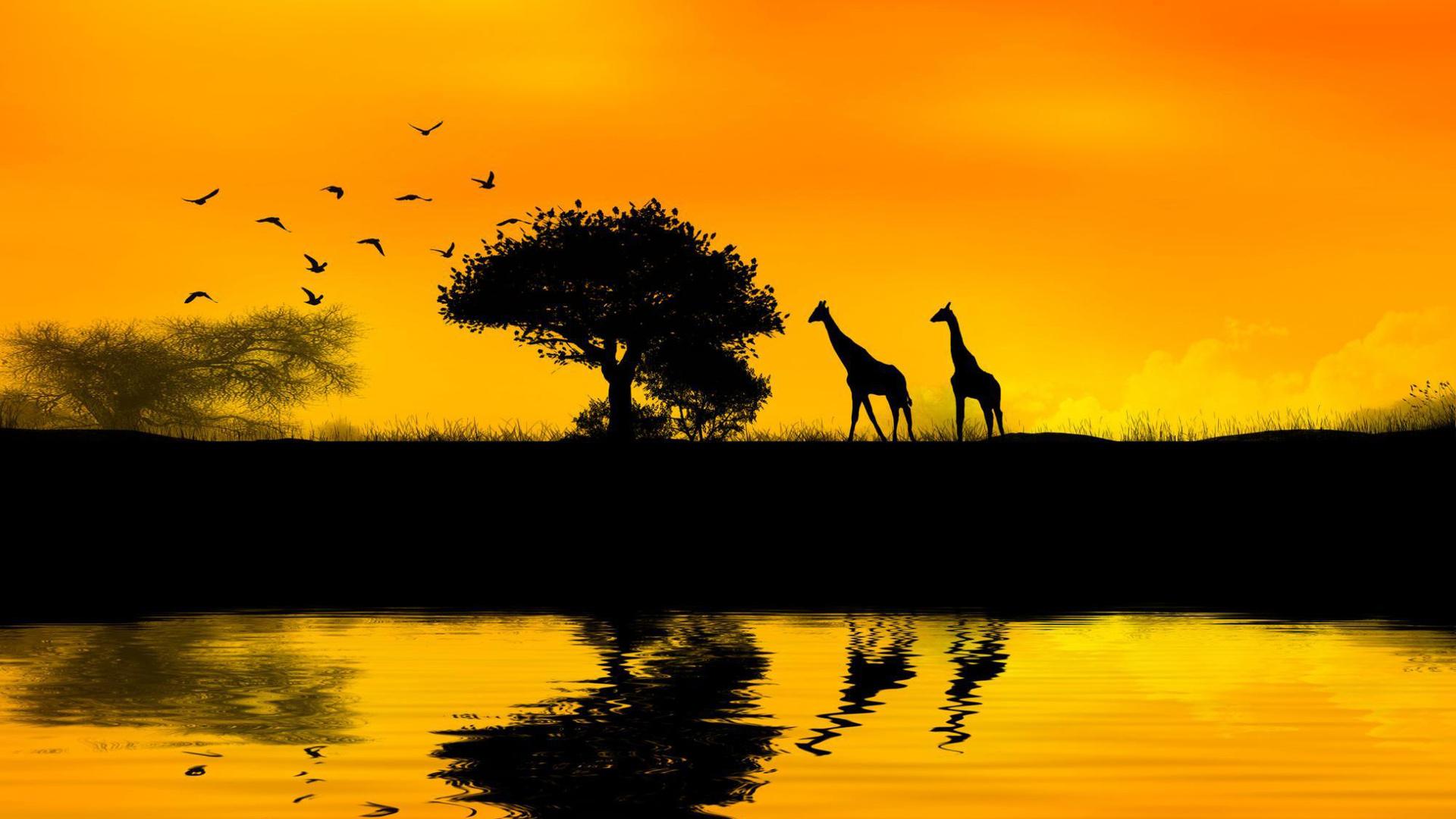 African-wallpaper-wp3402209