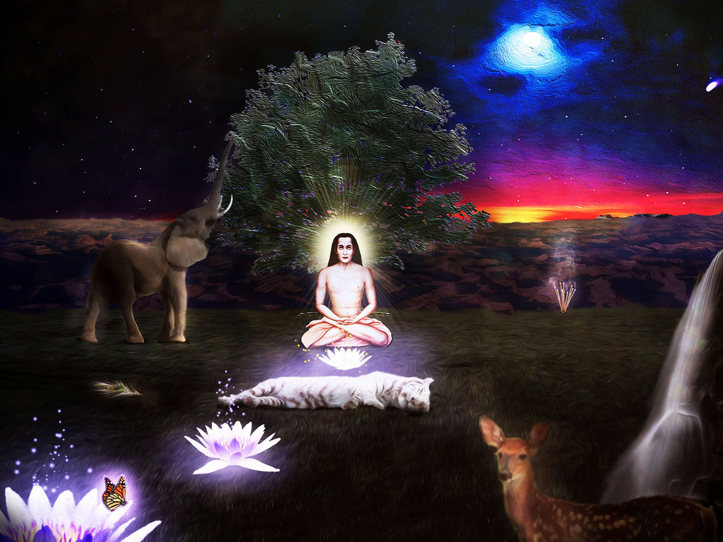 All-sizes-Babaji-Safari-Flickr-Photo-Sharing-wallpaper-wp423569