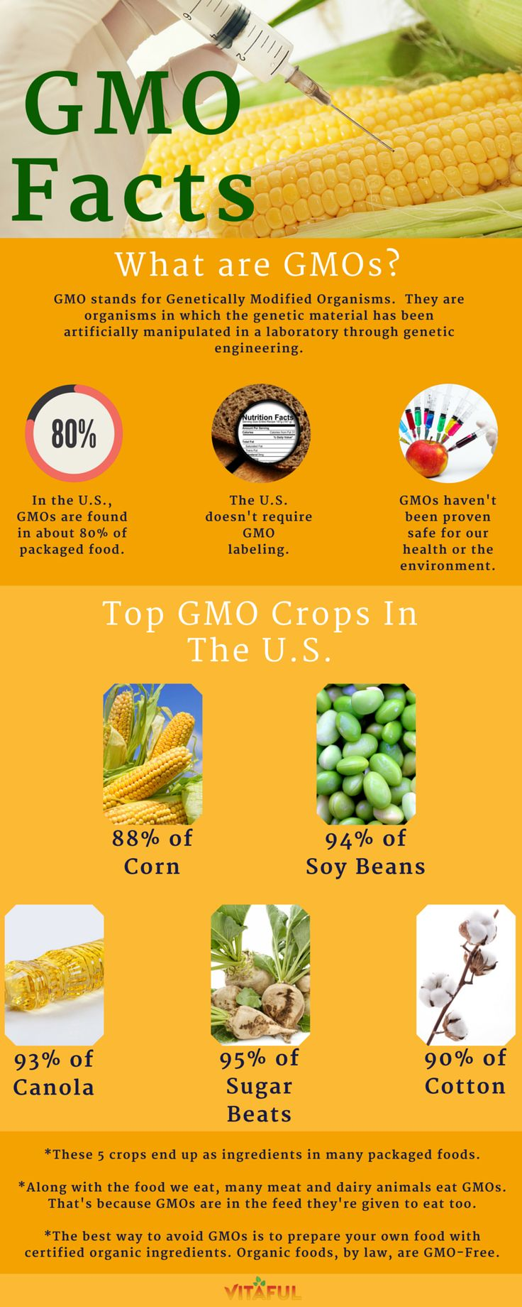 An-Overview-Of-GMOs-Includes-a-List-of-Top-GMO-Crops-in-the-U-S-And-How-To-Avoid-Eating-GMOs-Foo-wallpaper-wp3003202