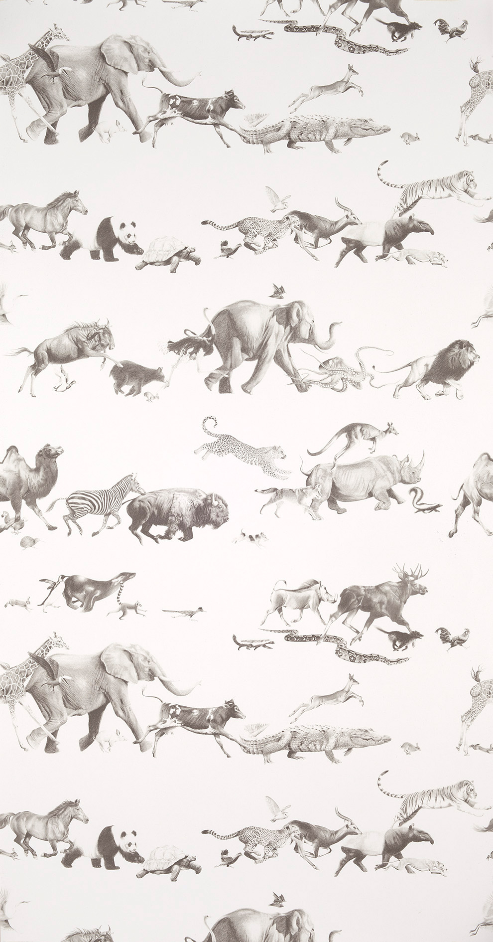 Animals-Pencil-on-Bone-wallpaper-wp6002014