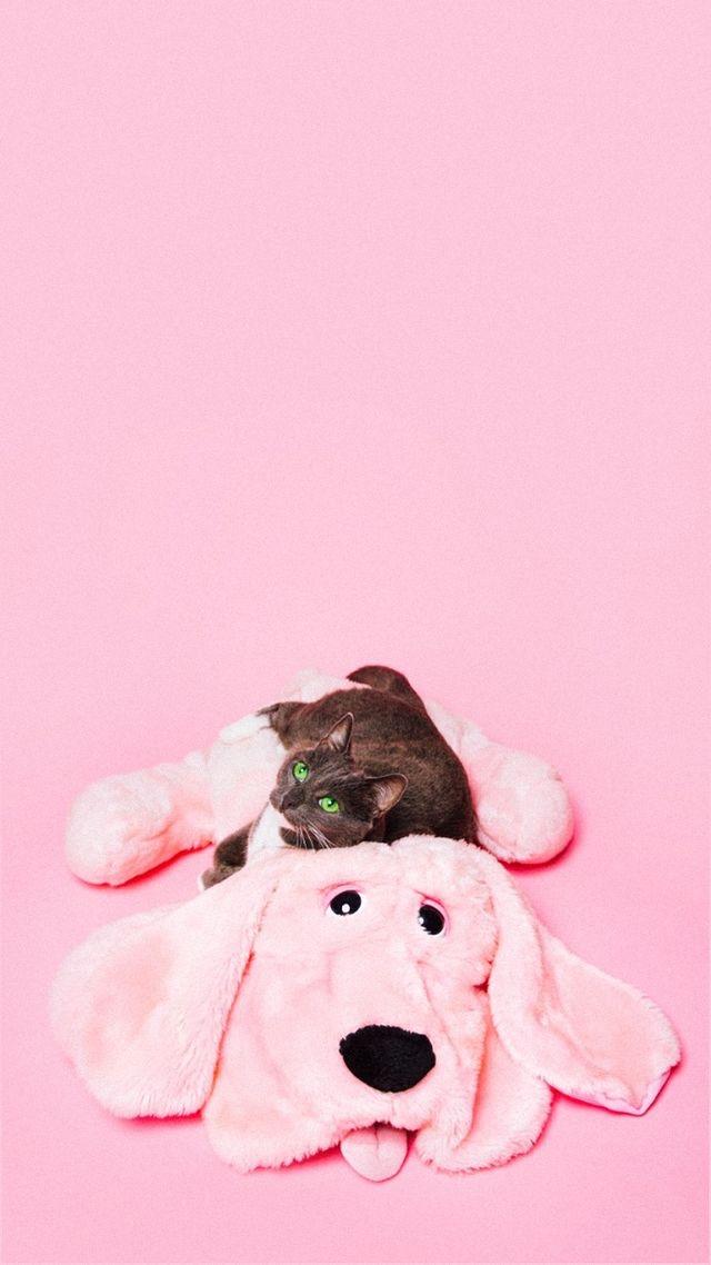Animals-wallpaper-iPhone-wallpaper-wp4801941