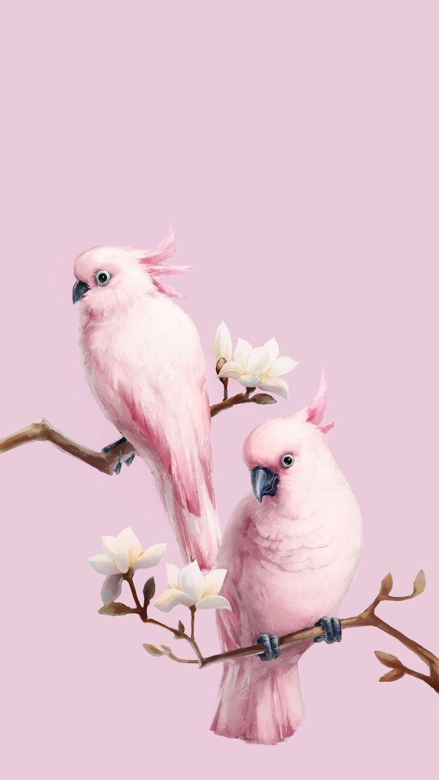 Animals-wallpaper-iPhone-wallpaper-wp480851