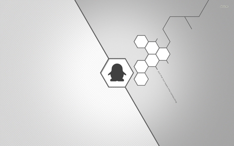 Arch-Linux-E-Fun-wallpaper-wp52012451