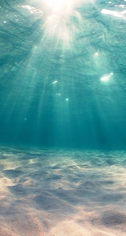 At-the-bottom-of-the-ocean-wallpaper-wp5204283