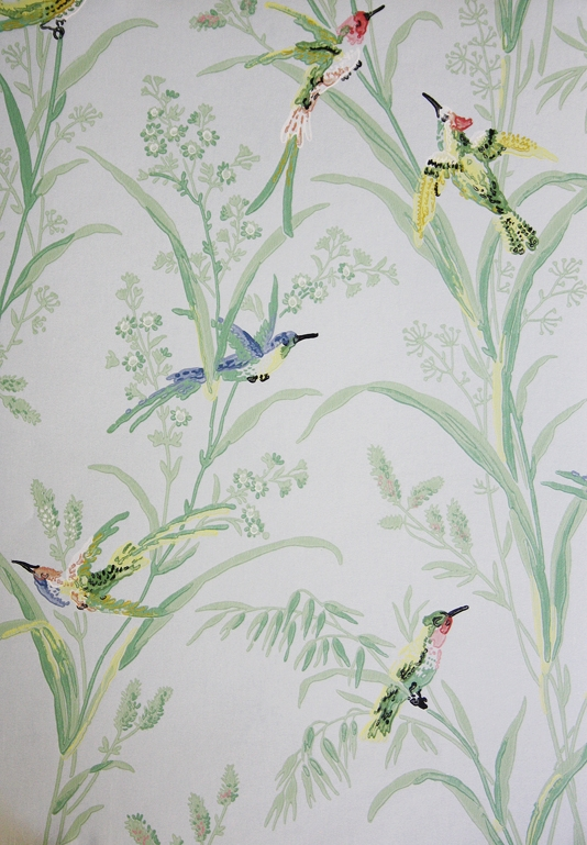 Augustine-A-printed-on-a-pale-blue-background-featuring-colourful-birds-amongst-wallpaper-wp423813-1