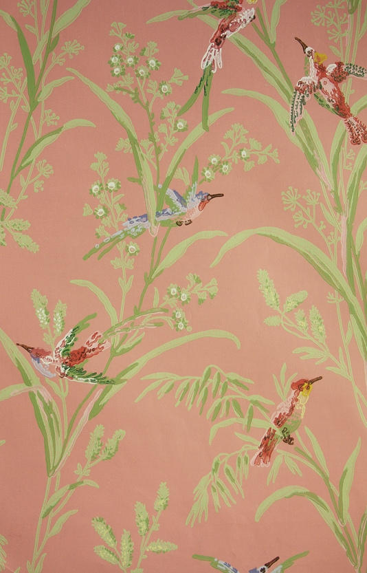 Augustine-A-printed-on-a-pink-background-featuring-colourful-birds-amongst-wild-wallpaper-wp423814-1