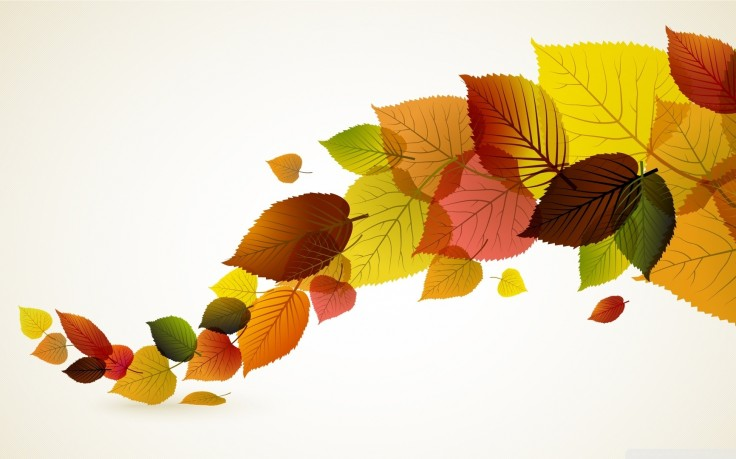 Autumn-Leaves-Background-Iphone-Samsung-Windows-Amazi-wallpaper-wp3402725