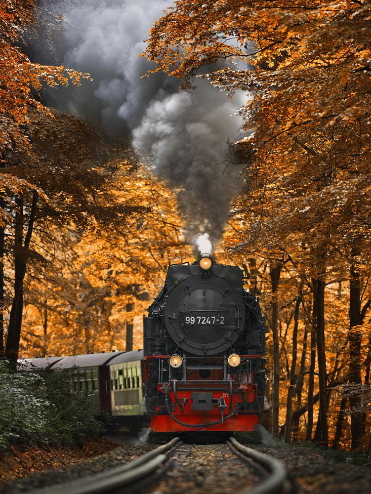 Autumn-Train-by-Alexander-Riek-on-px-Beautifull-wallaper-for-smartphone-wallpaper-wp423824