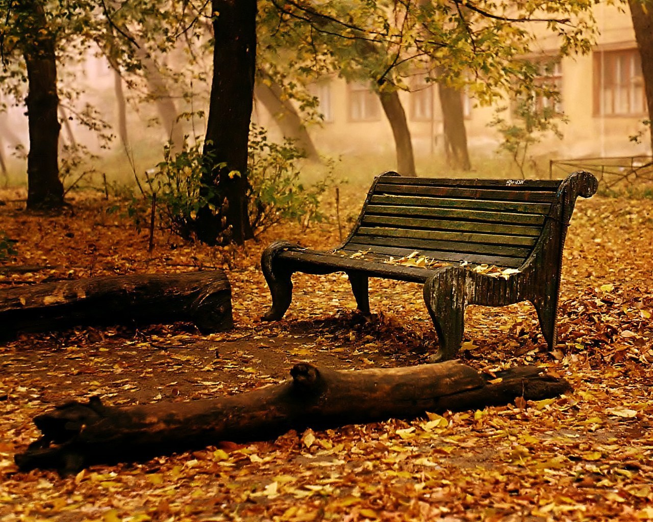 Autumn-autumn-jpg-%C3%97-wallpaper-wp6002145