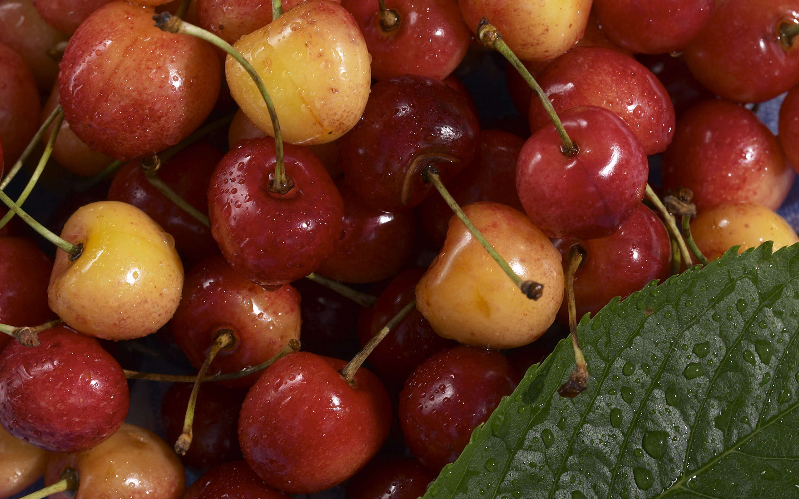 Awesome-Cherries-wallpaper-wp4603909-1