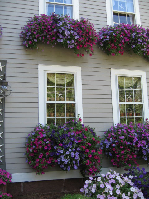 Awesome-window-boxes-wallpaper-wp4404710