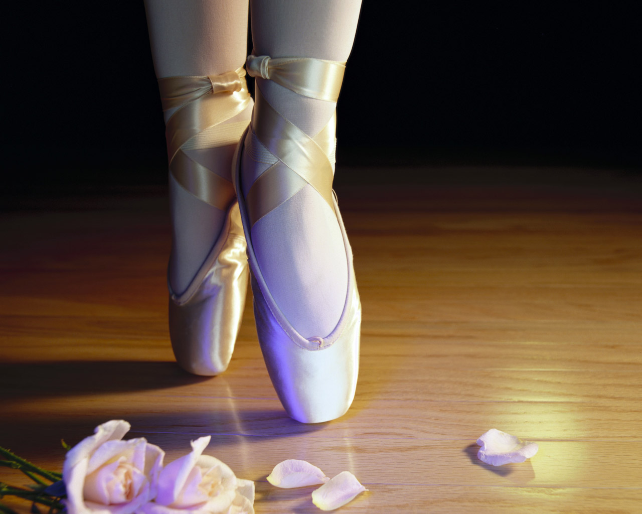 Ballet-Dance-Shoes-Learn-to-dance-at-BalletForAdults-com-wallpaper-wp5004975