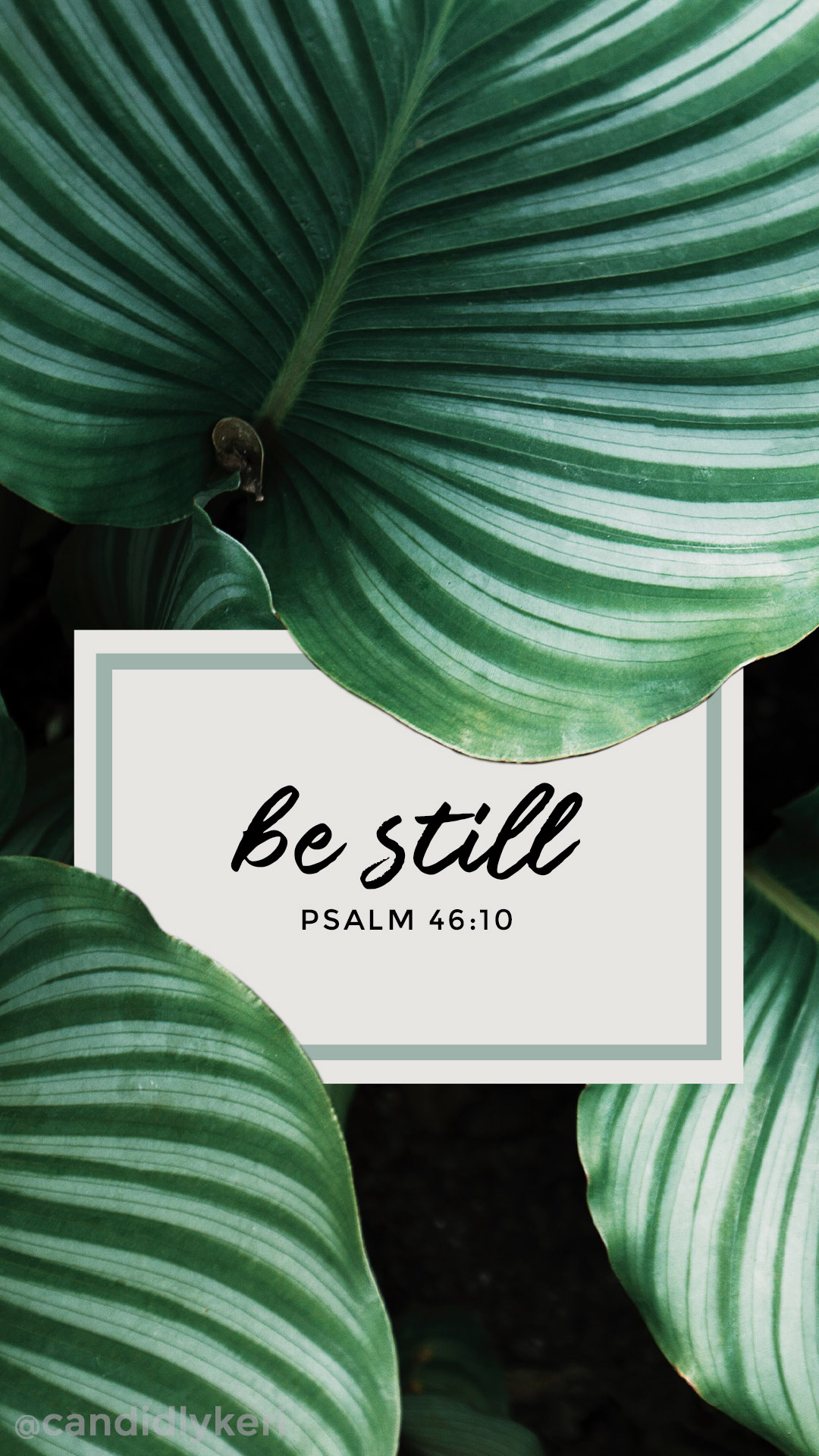 Be-Still-Psalm-bible-quote-leaf-palms-inspirational-calming-quote-you-can-downl-wallpaper-wp3402948