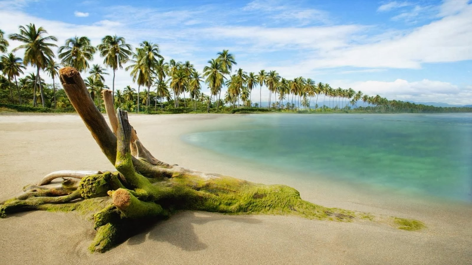 Beach-Nature-HD-1080p-Widescreen-HD-Blog-wallpaper-wp3603049