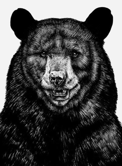 Bear-Art-Print-wallpaper-wp4604097-1