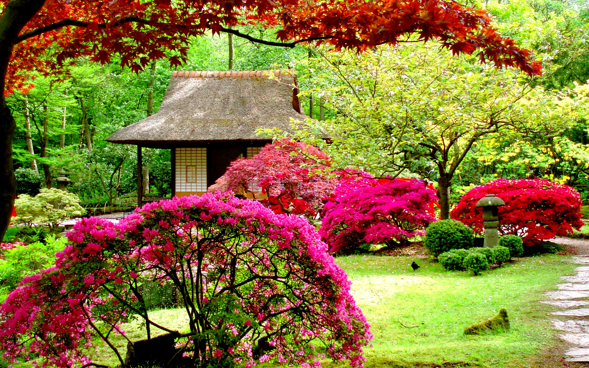 Beautiful-Garden-Hd-wallpaper-wp6002268