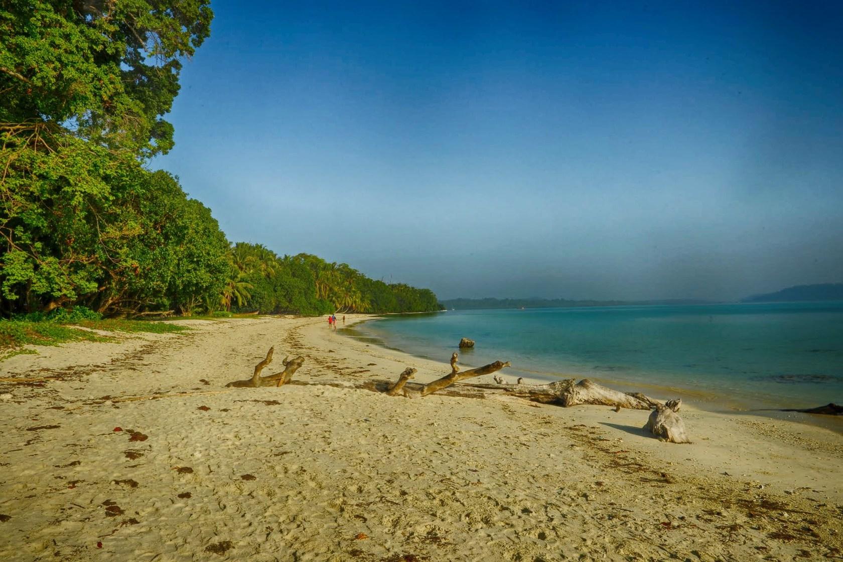 Beautiful-Havelok-Beach-Dolphin-Resort-HD-landscape-wallpaper-wp5803890