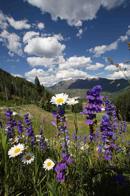Beautiful-Spring-Day-Durango-Colorado-wallpaper-wp4404979